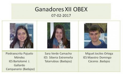 ganadores XII OBEX